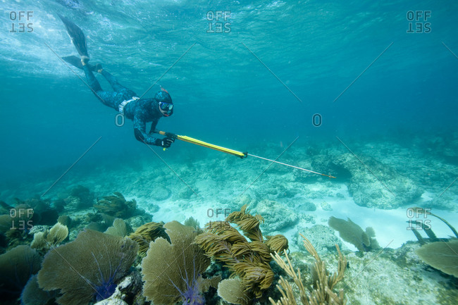 Free diving spearfisherman - Offset Collection