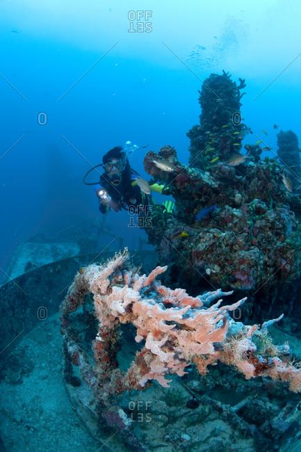 Diver near a gun turret on the Spiegel Grove shipwreck