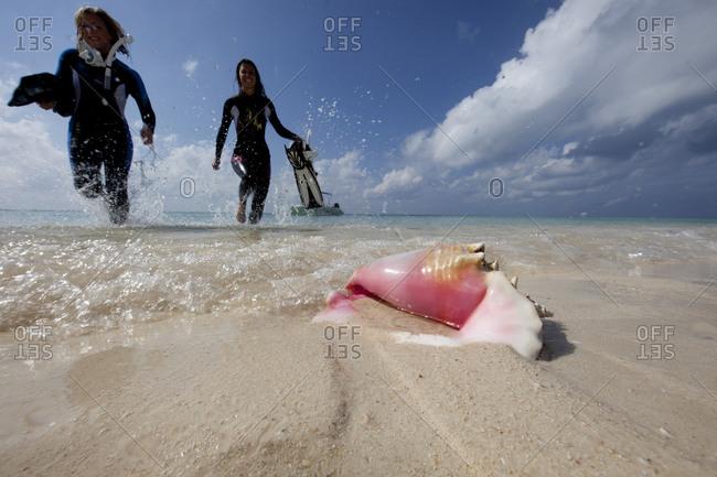 Two women frolic in the surf