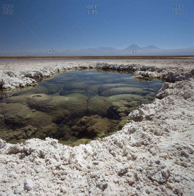 Laguna Lejia, Atacama Desert, Chile