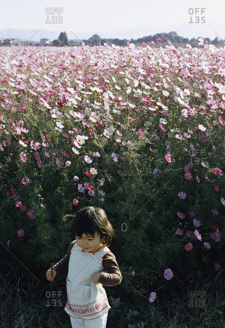Baby in front of field of flowers