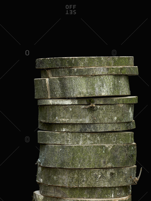 Stack of cut beech tree trunk