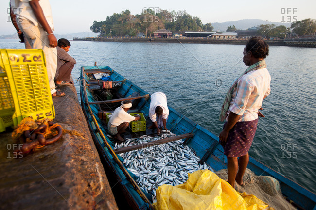 Fishermen bring in daily catch Andaman Islands, India