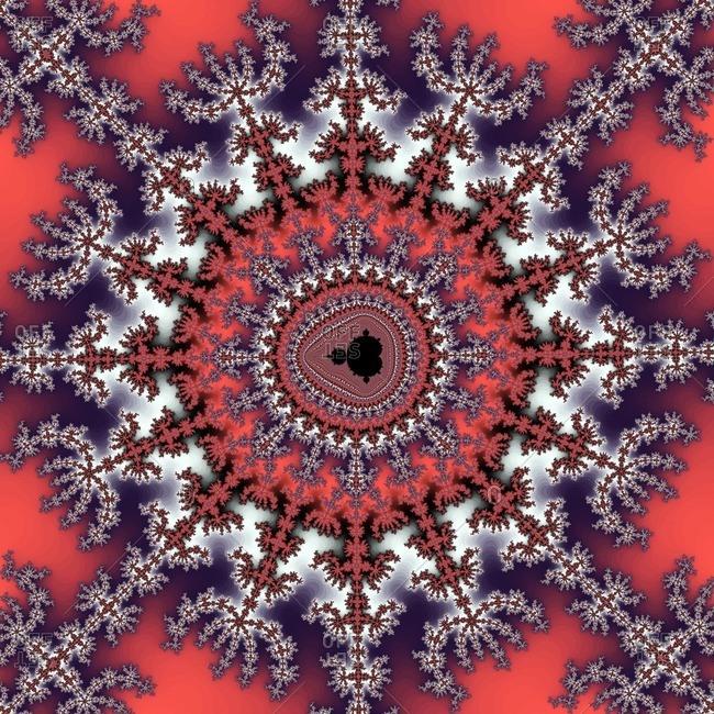 Computer-generated image derived form a Mandelbrot Set.
