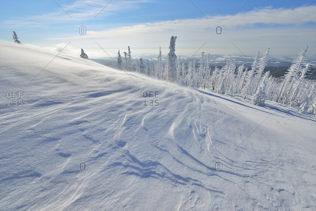 Peak of Mount Lusen with Blowing Snow in Winter, Grafenau, Bavarian National Park Bavarian Forest, Bavaria, Germany