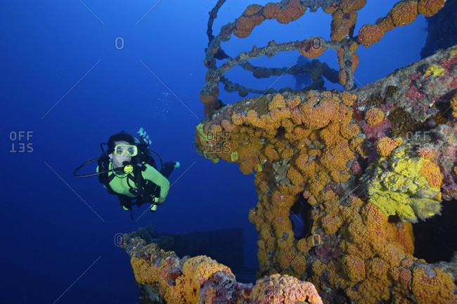 Scuba diver swims along invertebrate covered wheelhouse a shipwreck