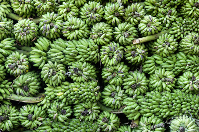 Bananas, India from the Offset Collection