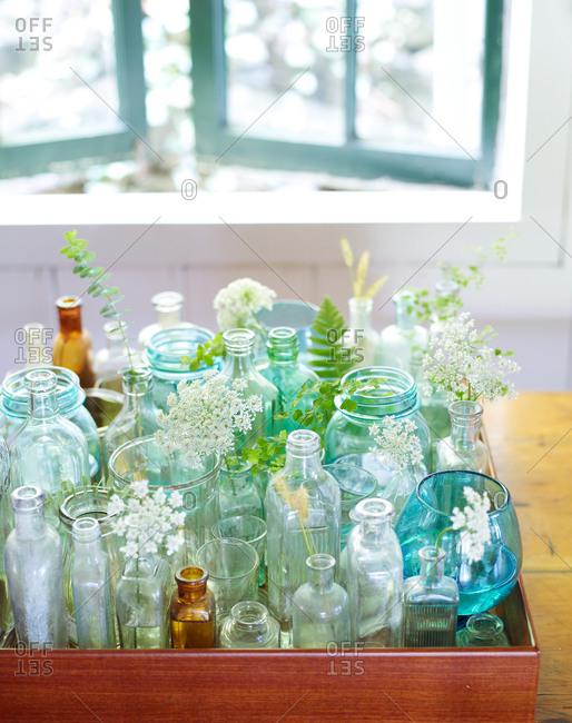 Various types of glass bottles with elderflower