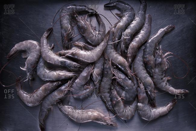 Fresh shrimps on iron tray