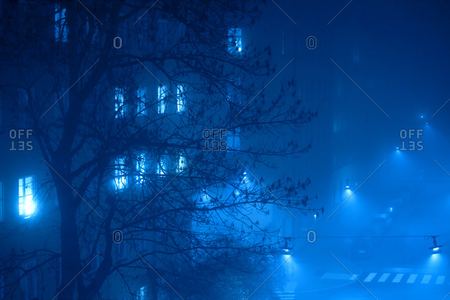 Tree and building at night in fog