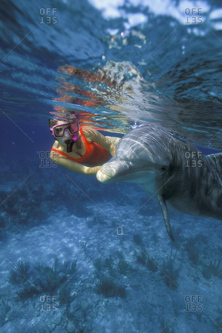Female snorkeler interacts with sociable dolphin