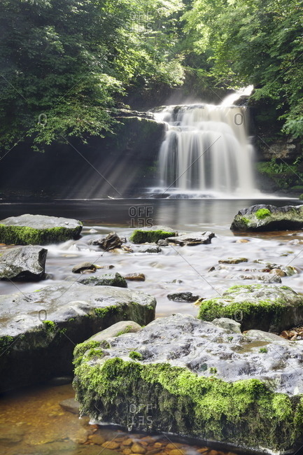 Westburton Waterfall, Westburton, Yorkshire Dales, Yorkshire, England, United Kingdom, Europe