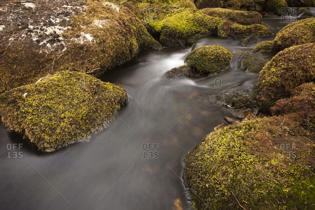 O Brook stream, Dartmoor, England