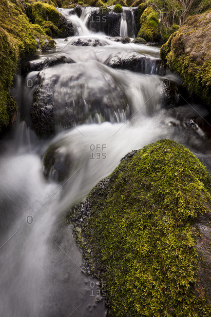 River Dart, Dartmoor, England