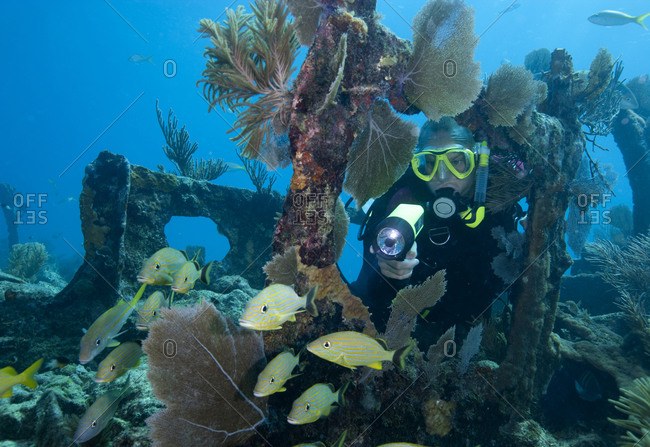 "Scuba diving on the shipwreck ""City of Washington"", Florida Keys National Marine Sanctuary"