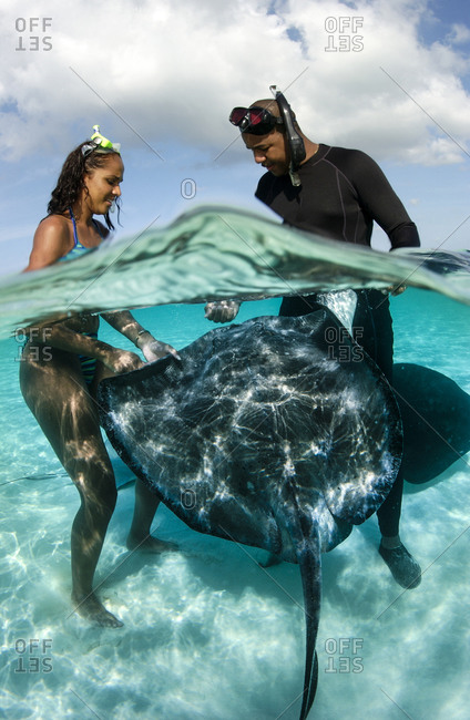 A couple interacts with southern stingrays,  Stingray city, Grand Cayman