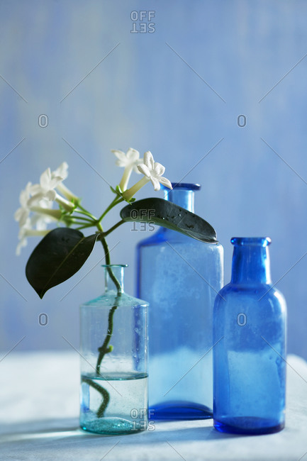 Medicine bottles with flower
