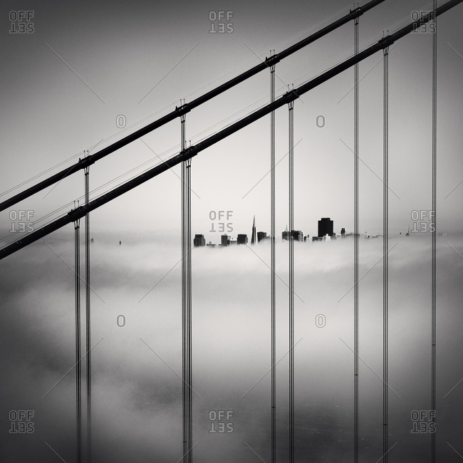 A view of San Francisco buildings above heavy fog