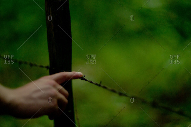 Finger Touching Barbed Wire Fence
