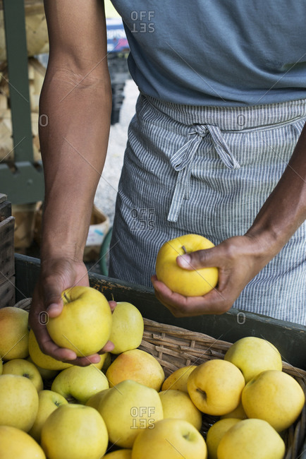 Mid-section view of man packing fresh apples