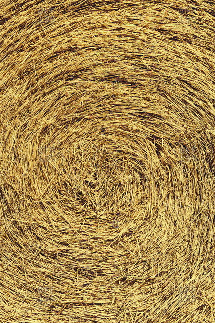 Center of  bale of straw
