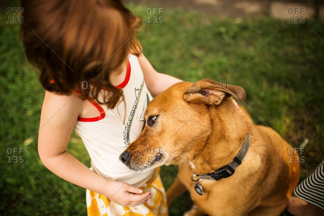 Overhead view of redhead girl petting dog in garden