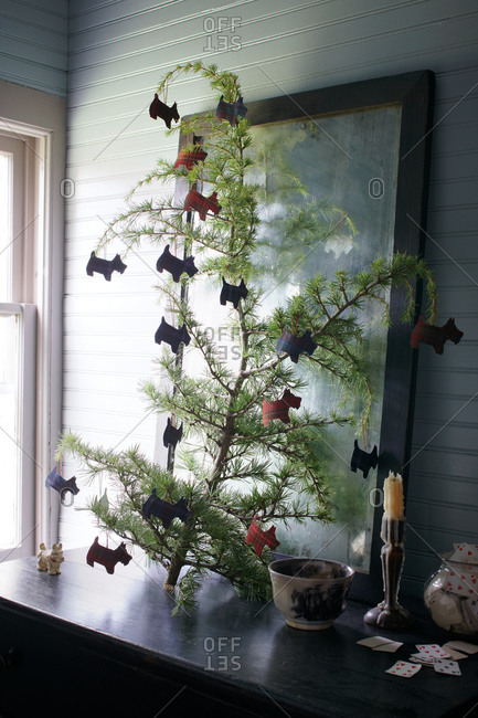 Scottish Terrier ornaments hanging on Christmas branch