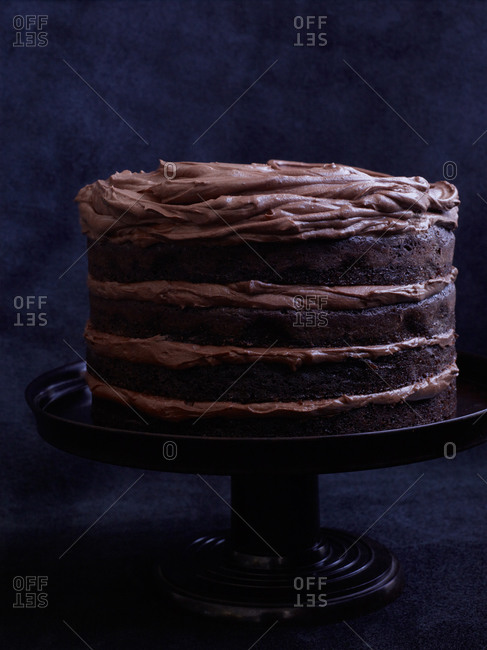Double chocolate cake on stand