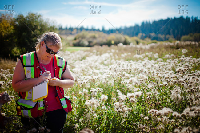 A female researcher taking notes in a field of wildflowers