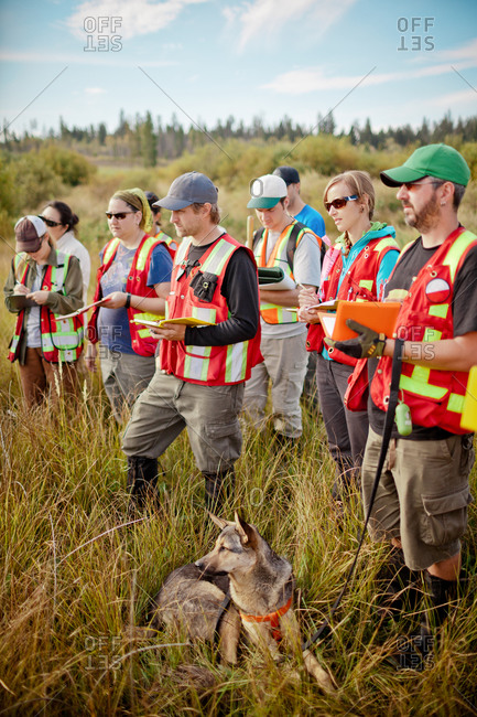 Students take notes while conducting field research