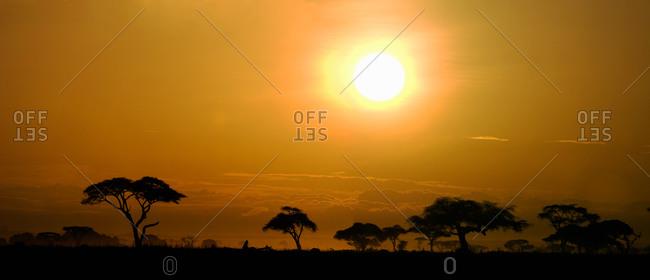 Orange Sunrise, Amboseli, East Africa