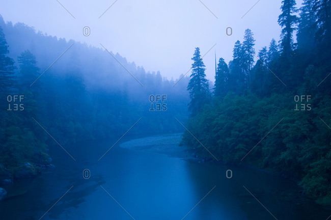 River passing through a forest in the rainy morning