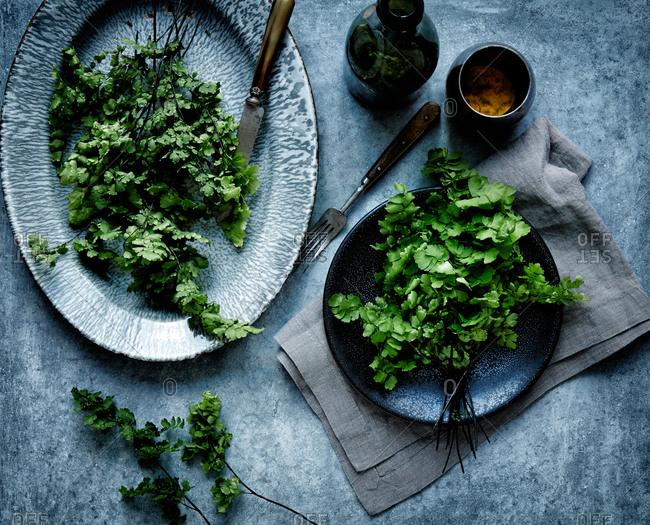 Still life of parsley