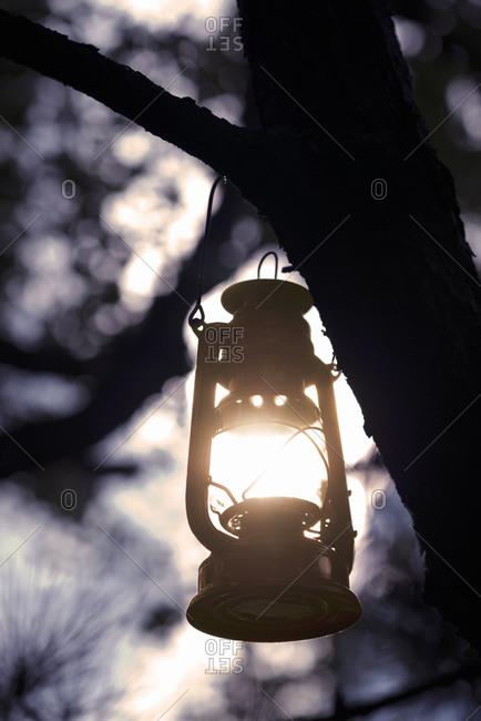 Garden lantern in the evening light