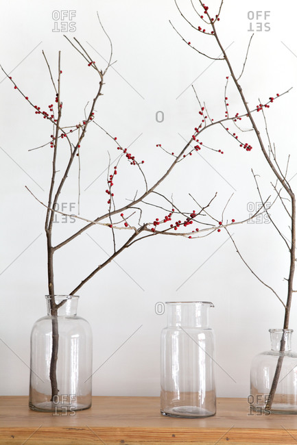 Decorative twigs with red berries