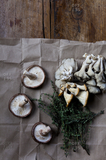 Overhead view of different type of wild mushrooms and thyme
