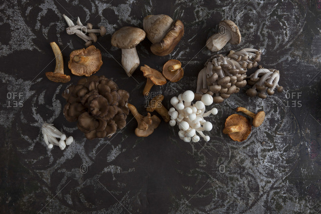 Mushrooms arranged on table