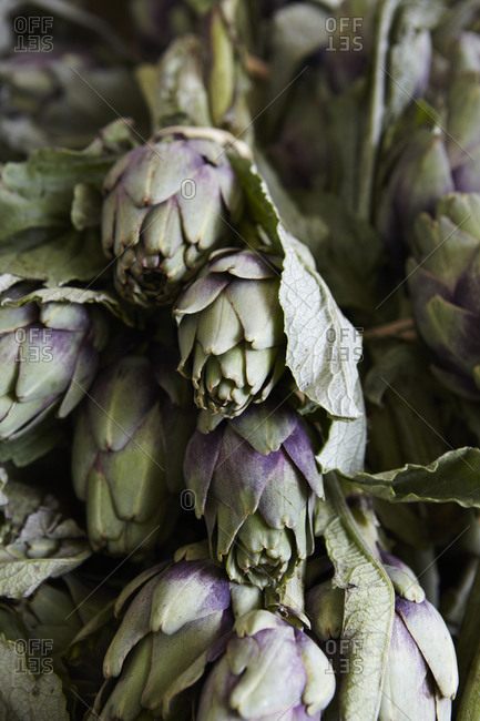 A pile of fresh artichokes