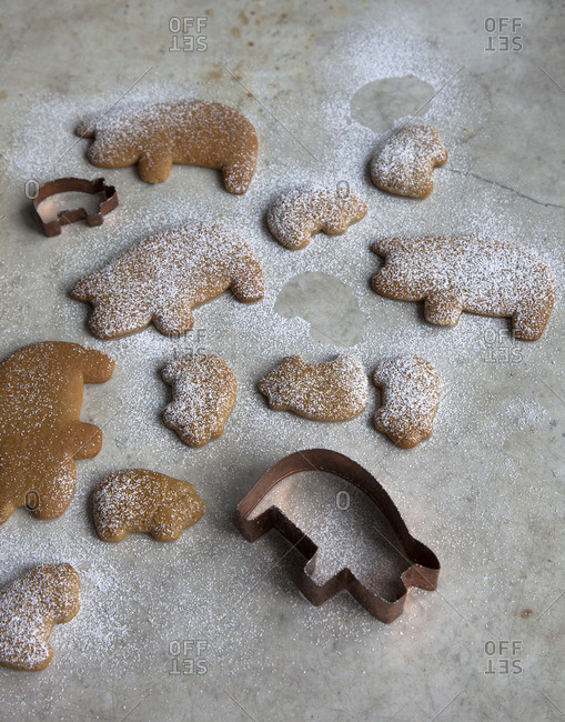 Cinnamon and piloncillo cookies sprinkle confectioners� sugar on top