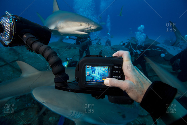 Photographer captures image of another underwater photographer capturing a similar image