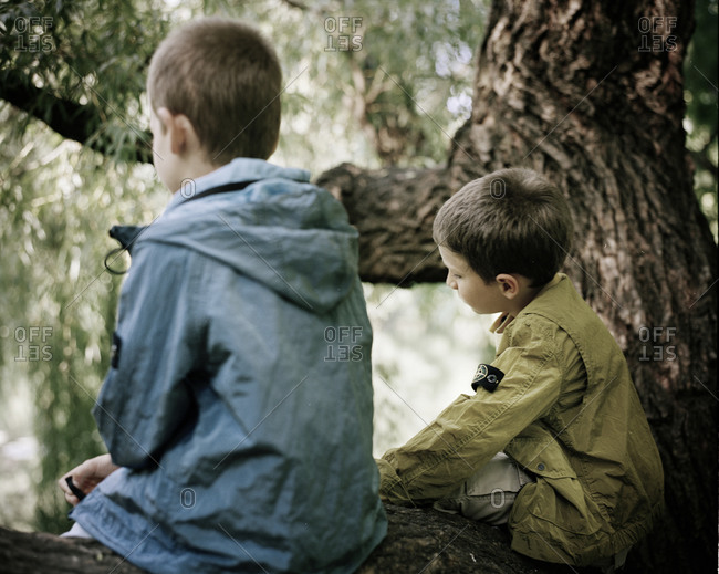 Two boys sitting on a tree branch