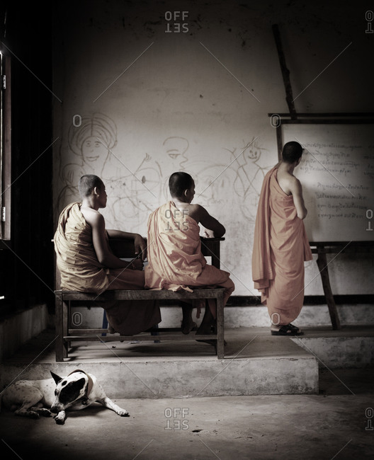 Rear view of Buddhist monks studying