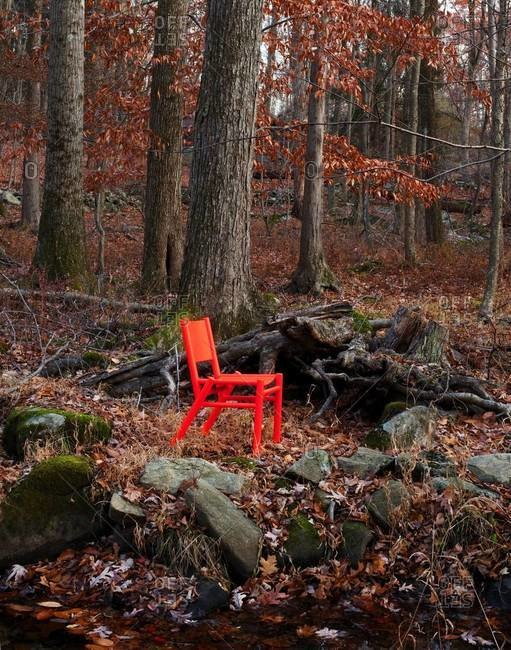 Design chair in forest