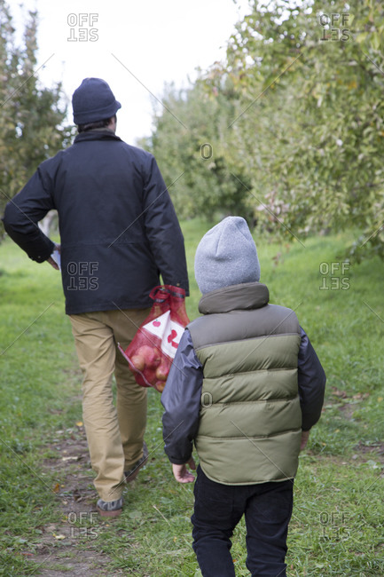 Father and son in an apple orchard