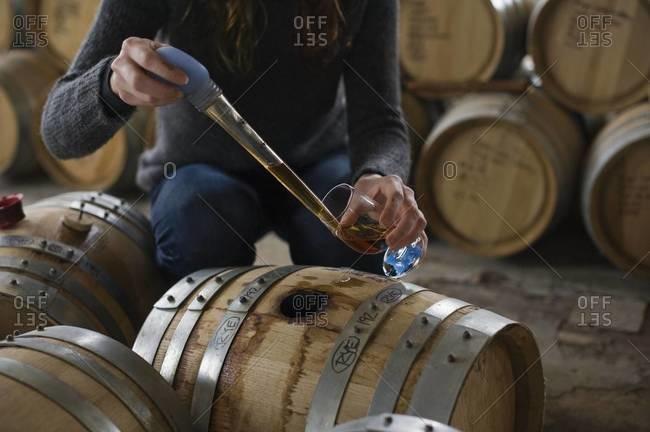 Barrel tasting in whiskey distillery