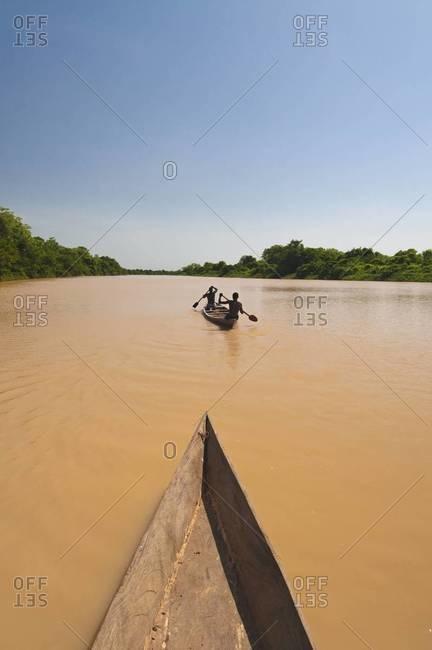 Men paddling canoe upstream, black Volta river, Ghana