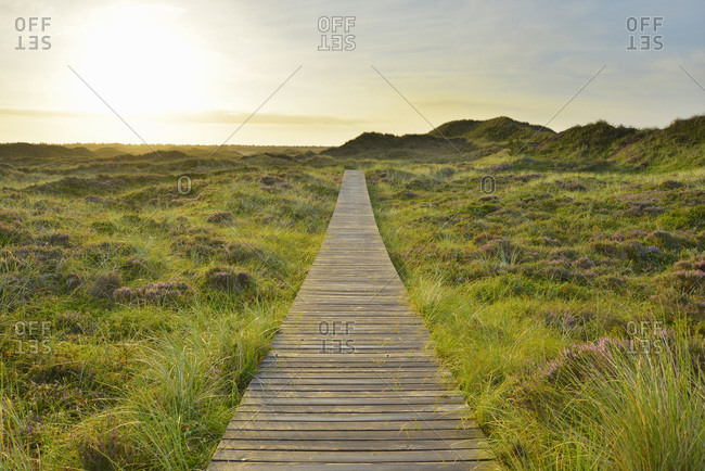 Wooden Walkway through Dunes with Sun, Summer, Norddorf, Amrum, Schleswig-Holstein