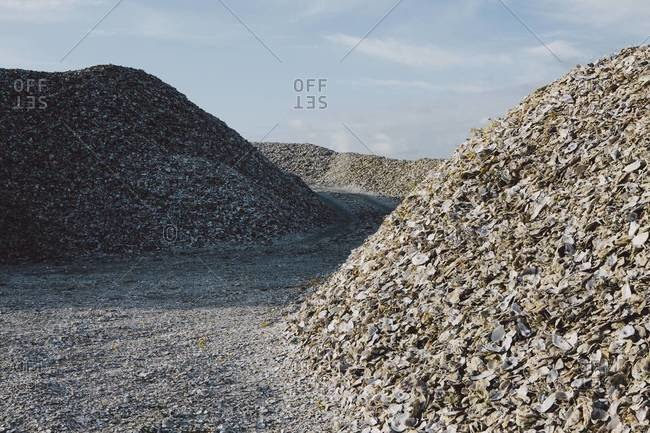 Road leading through piles of discarded oyster shells, Oysterville USA