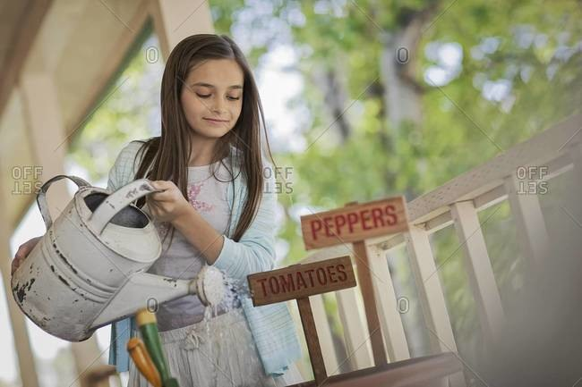 Young girl watering vegetable seeds