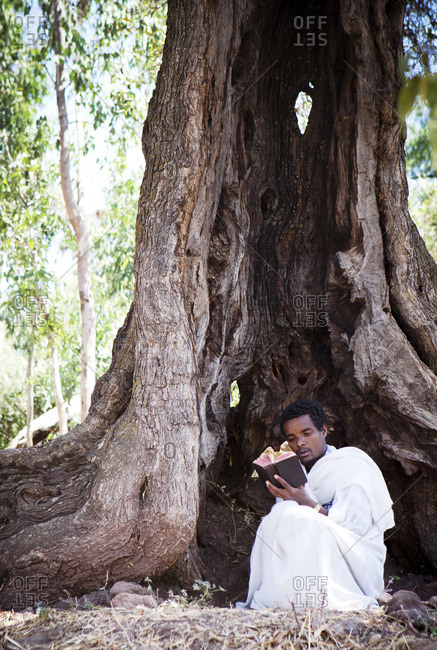 Young man reading bible next to hollow tree